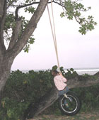 Kid on a Tire Rope Swing on the Beach
