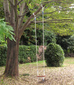 tree_swing_long_rope.jpg